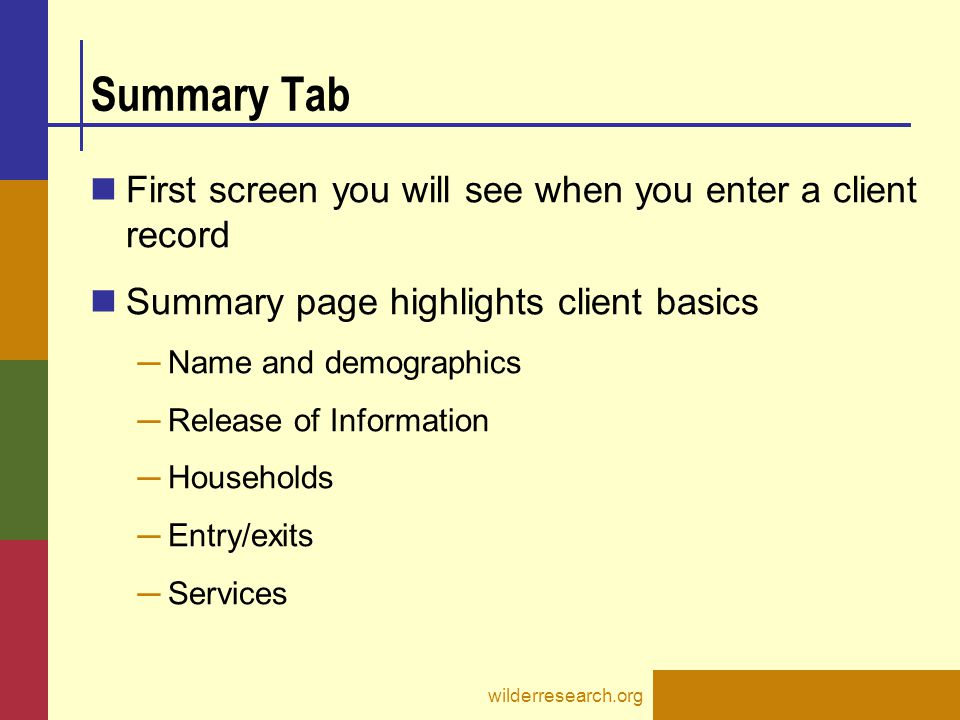 Summary Tab First screen you will see when you enter a client record