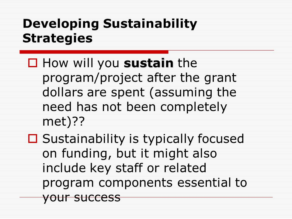 Developing Sustainability Strategies