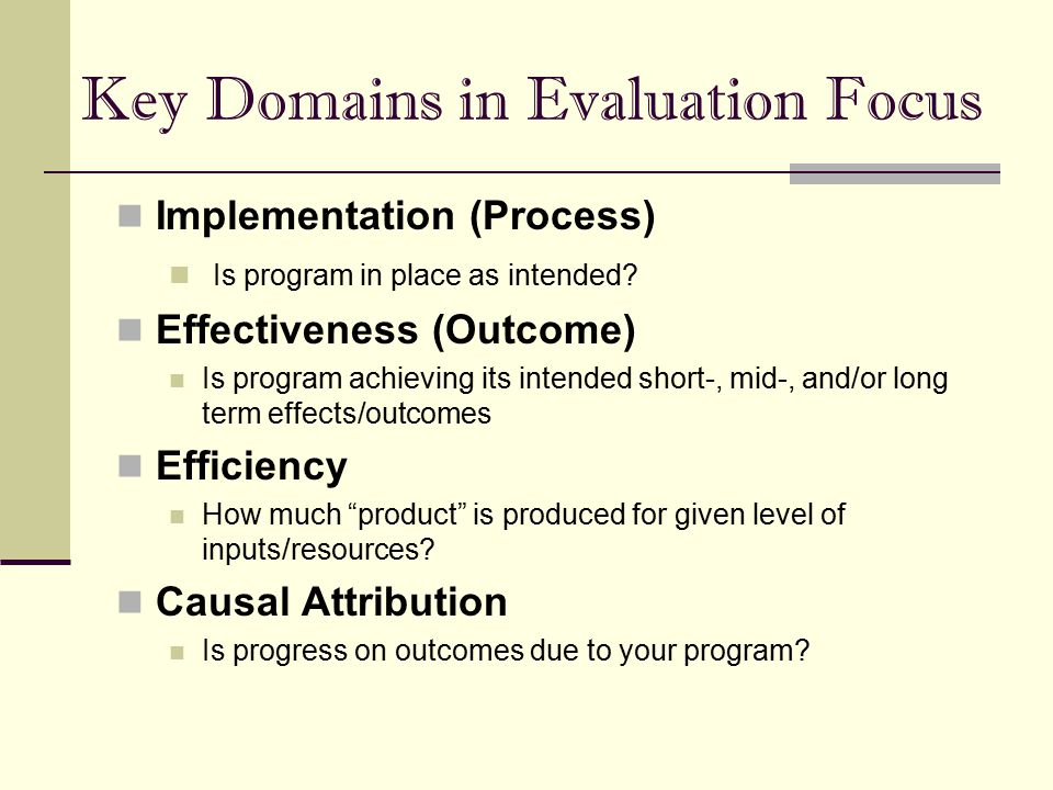 Key Domains in Evaluation Focus