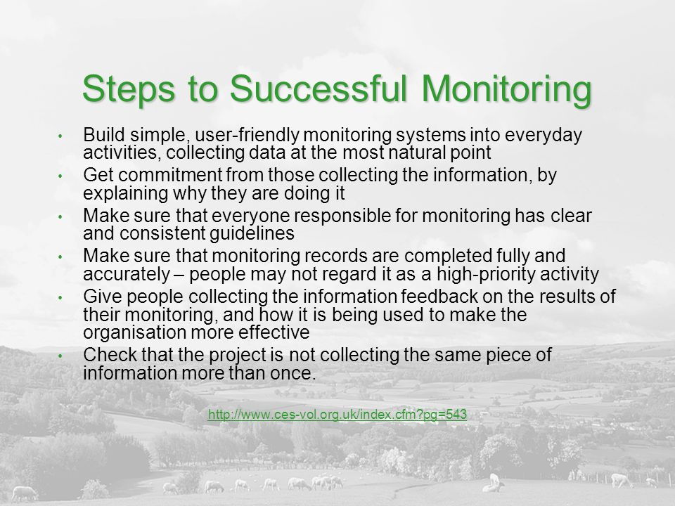 Steps to Successful Monitoring