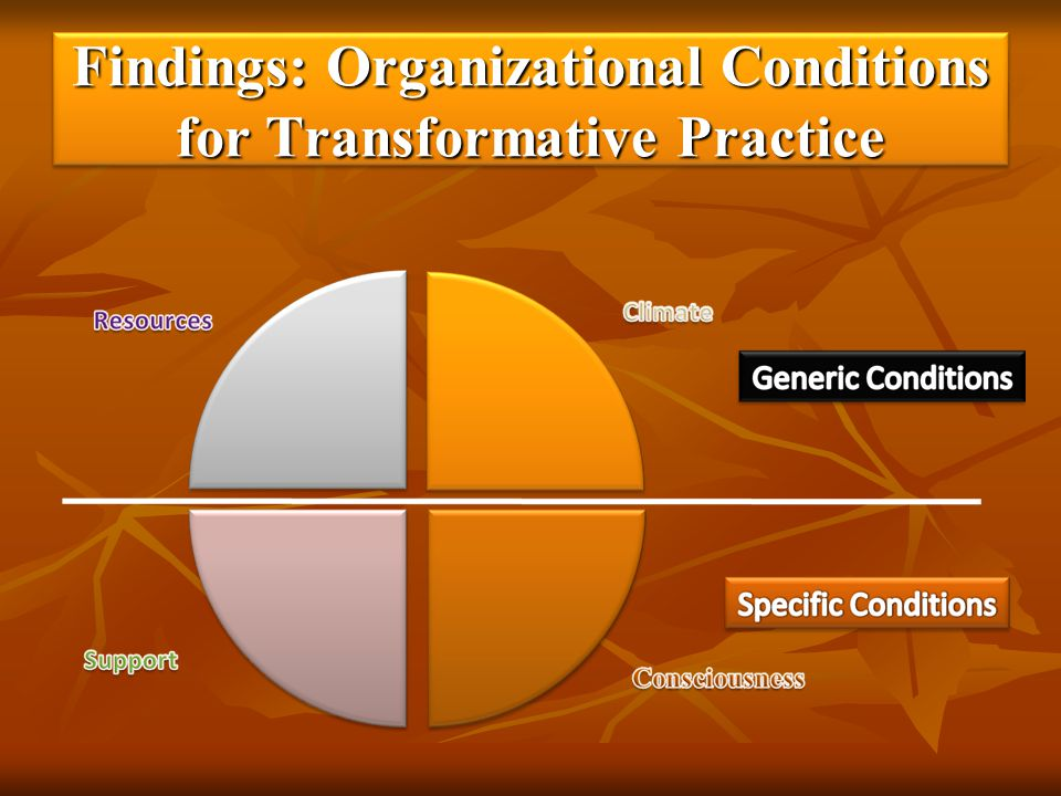 Findings: Organizational Conditions for Transformative Practice