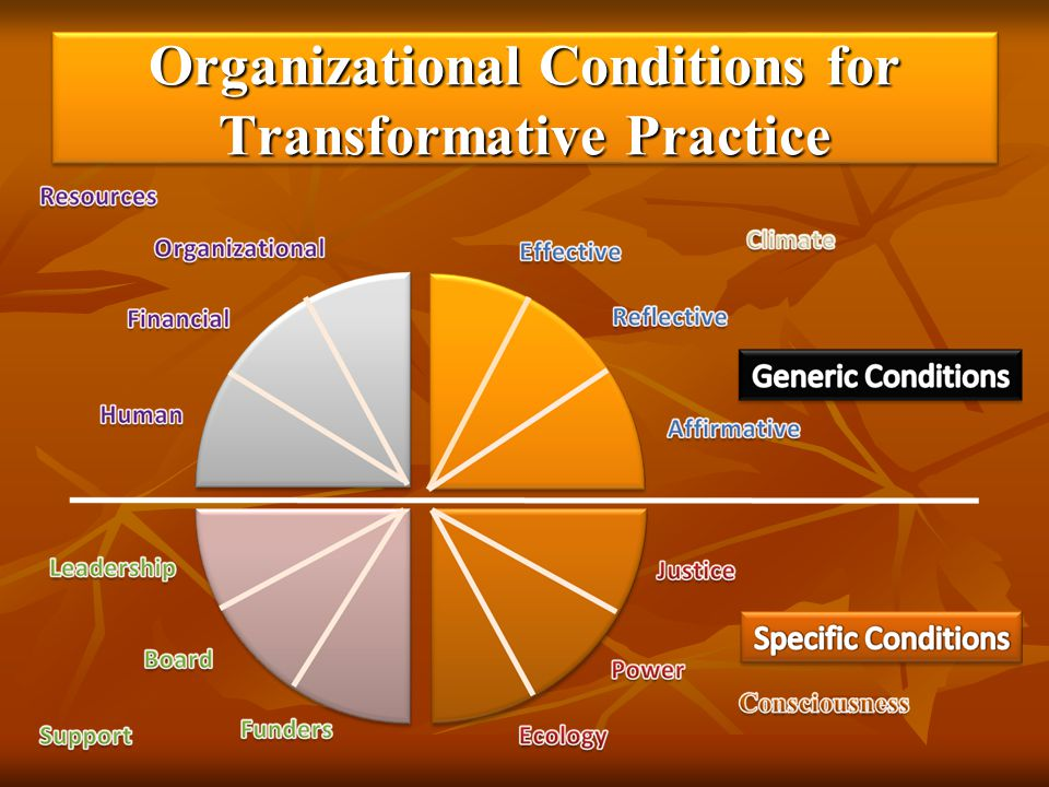 Organizational Conditions for Transformative Practice