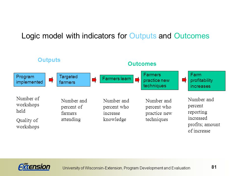 Logic model with indicators for Outputs and Outcomes