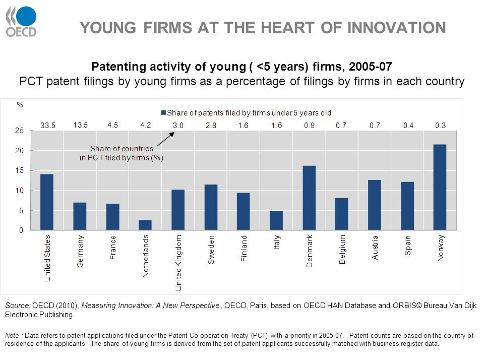 YOUNG FIRMS AT THE HEART OF INNOVATION