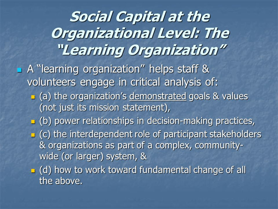 Social Capital at the Organizational Level: The Learning Organization