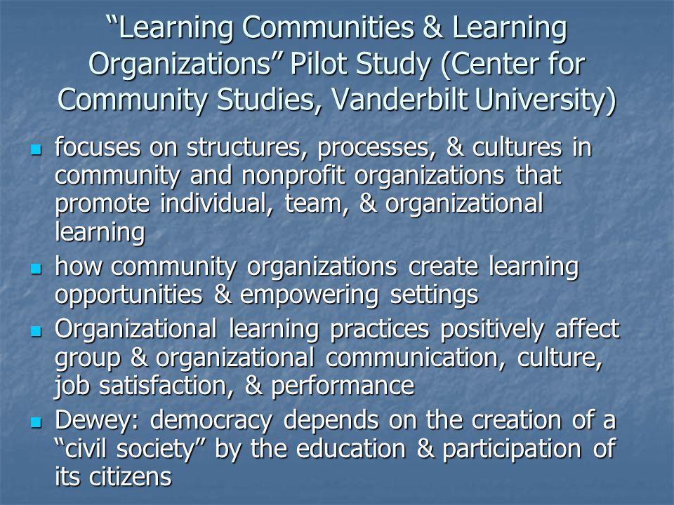 Learning Communities & Learning Organizations Pilot Study (Center for Community Studies, Vanderbilt University)