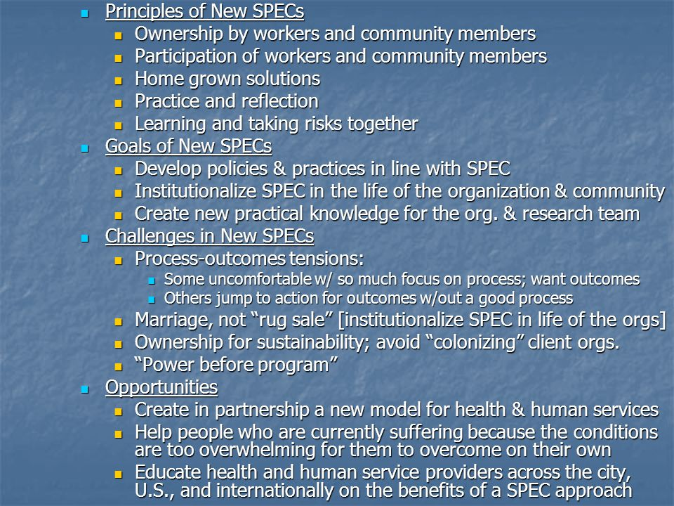 Principles of New SPECs Ownership by workers and community members
