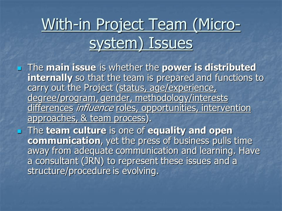 With-in Project Team (Micro-system) Issues