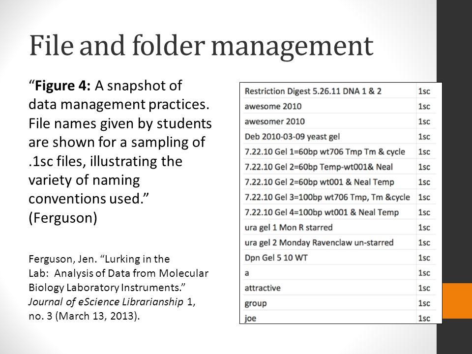 File and folder management