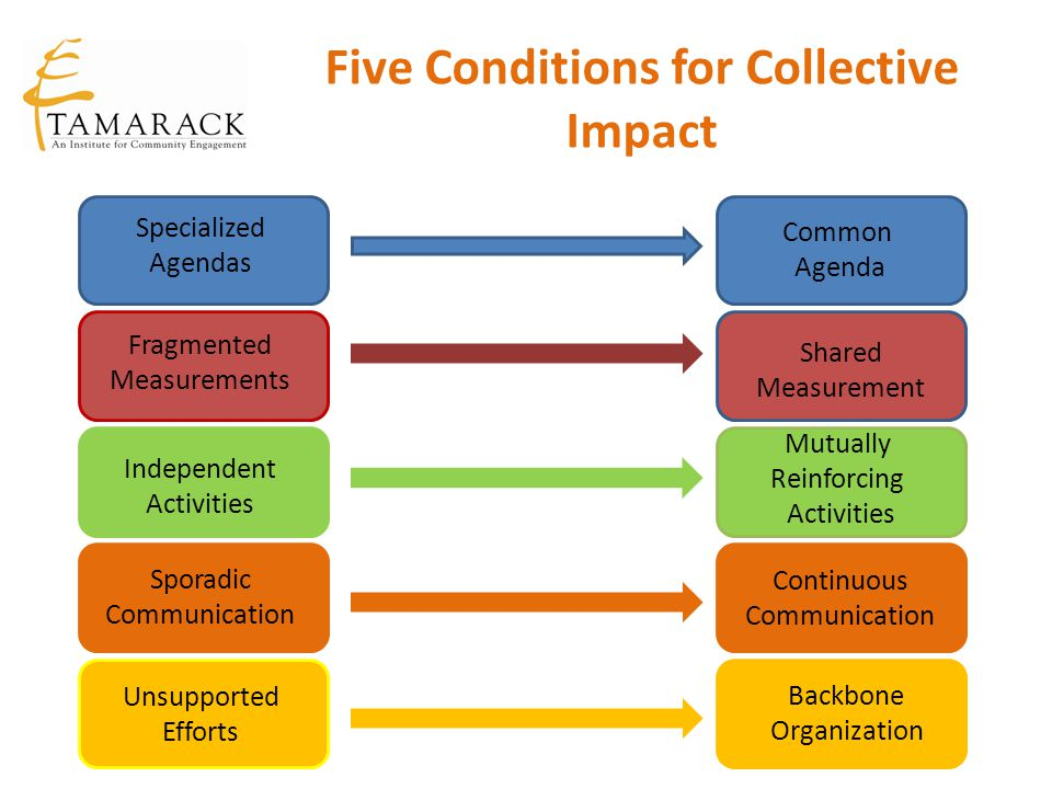 Five Conditions for Collective Impact