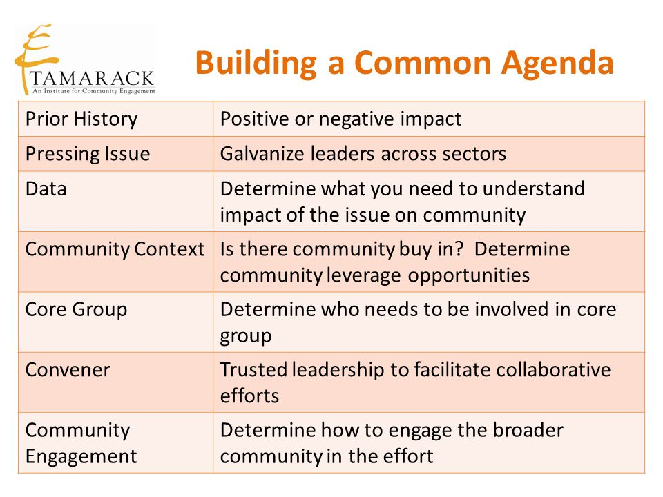 Building a Common Agenda