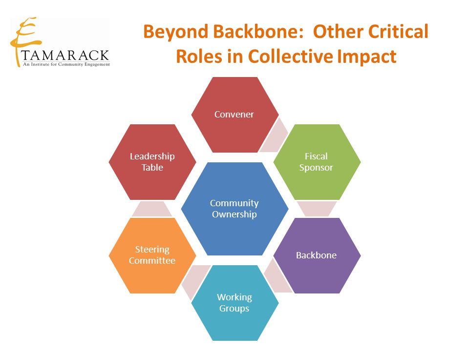 Beyond Backbone: Other Critical Roles in Collective Impact