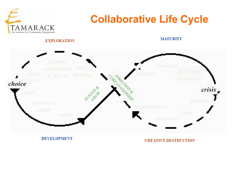Collaborative Life Cycle