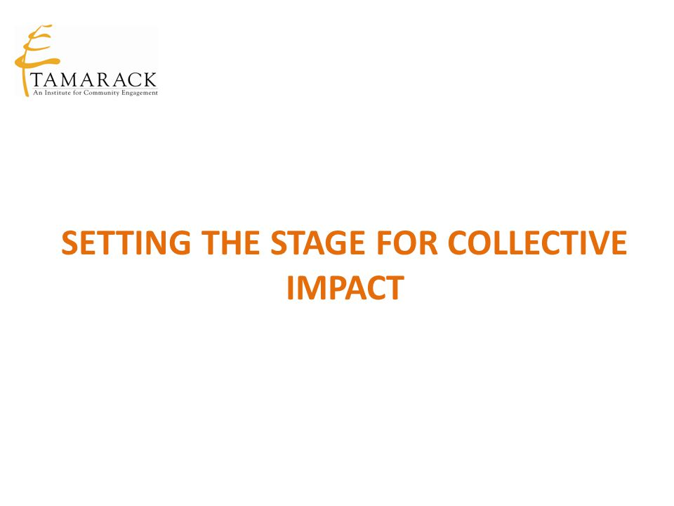 Setting the Stage for Collective Impact