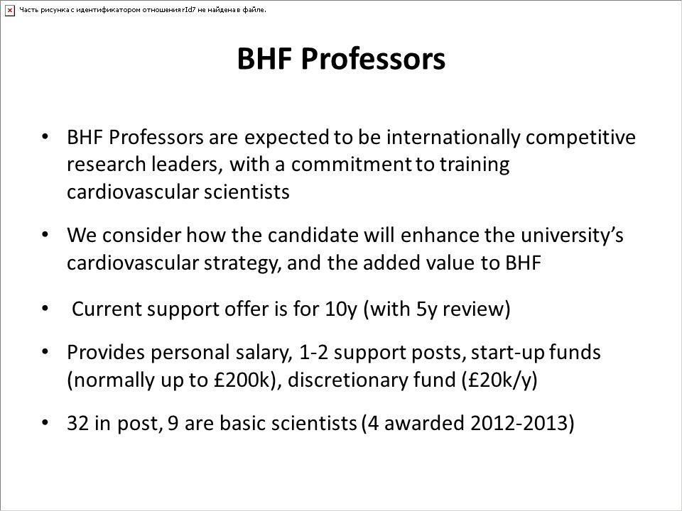 BHF Professors