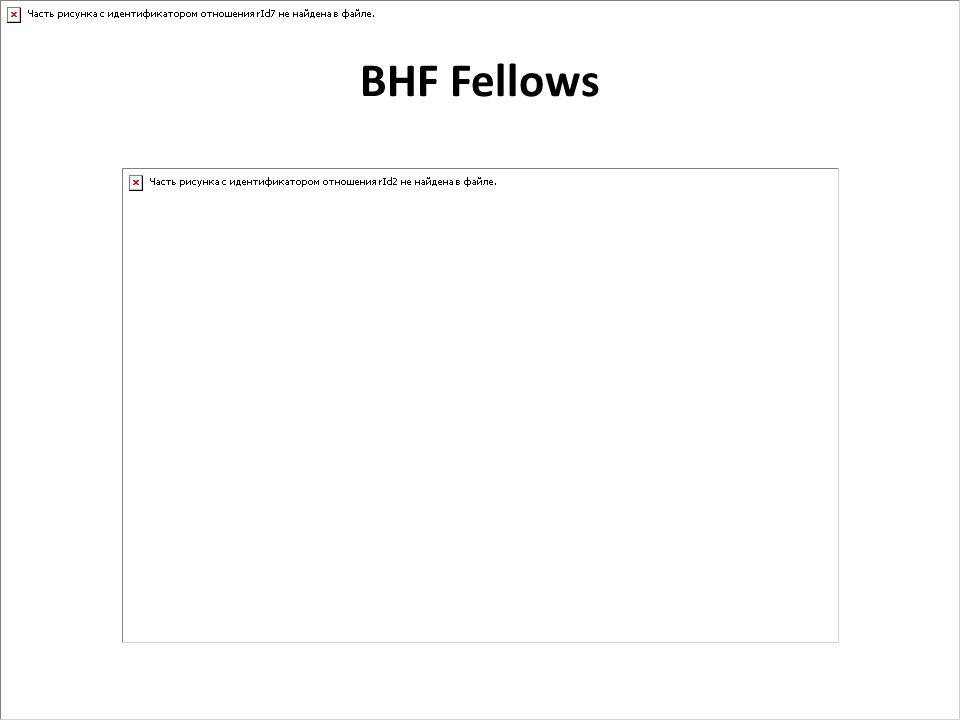 BHF Fellows