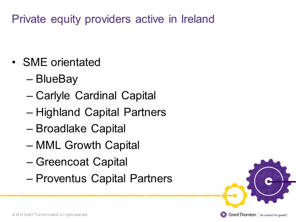 Private equity providers active in Ireland