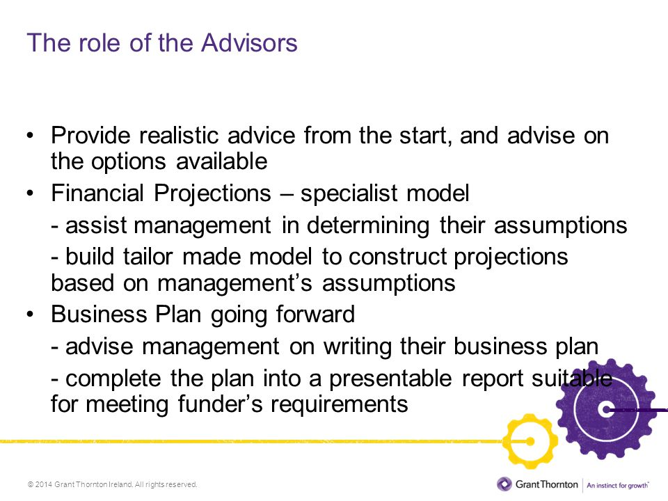 The role of the Advisors