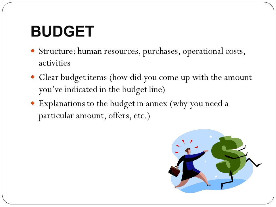 BUDGET Structure: human resources, purchases, operational costs, activities.