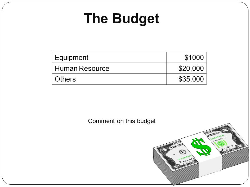 The Budget Equipment $1000 Human Resource $20,000 Others $35,000