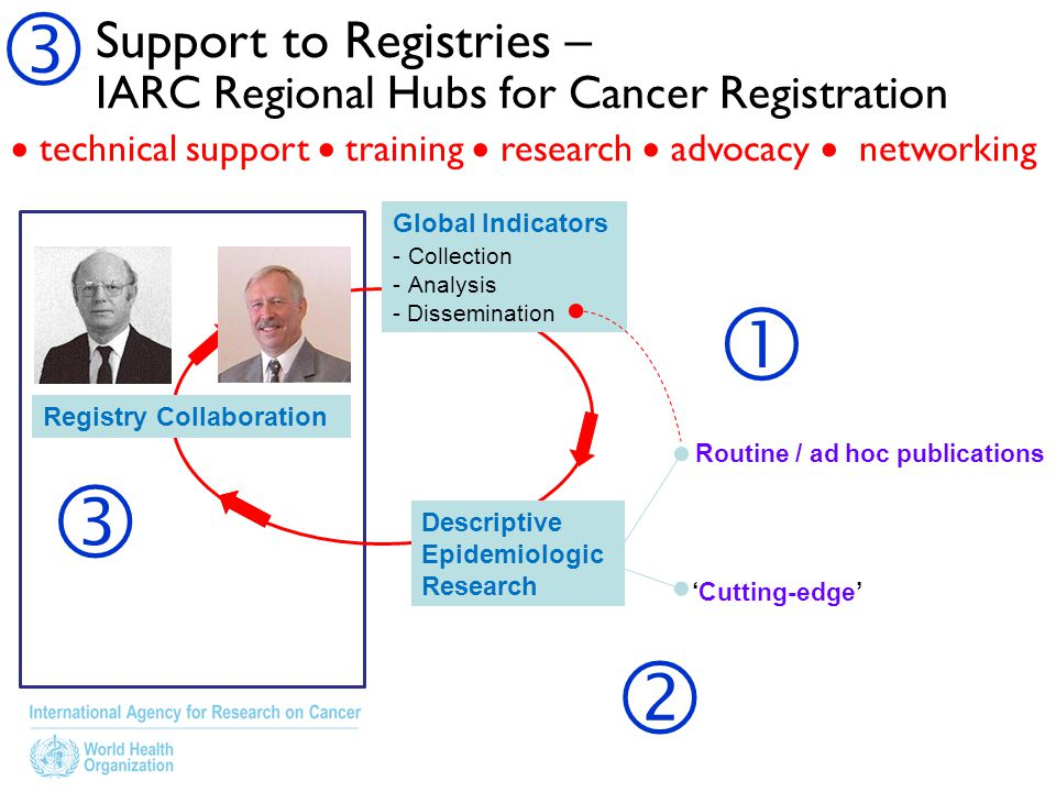  Support to Registries – IARC Regional Hubs for Cancer Registration.  technical support  training  research  advocacy  networking.
