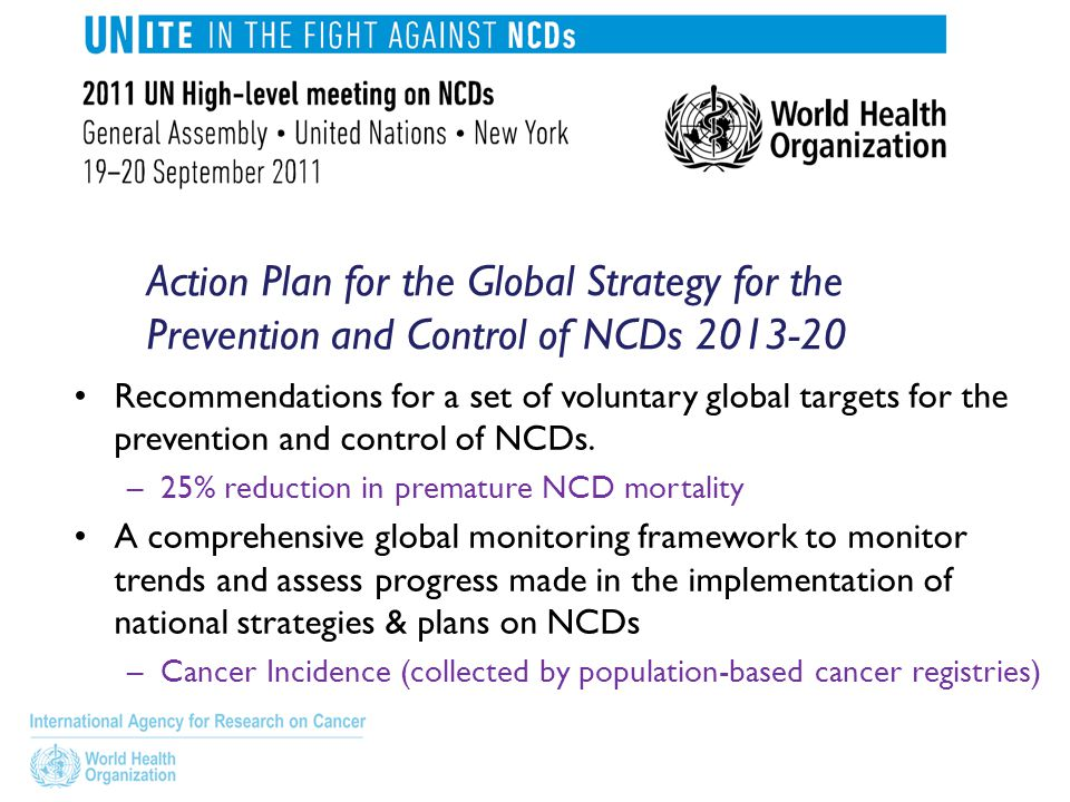 Action Plan for the Global Strategy for the Prevention and Control of NCDs 2013-20