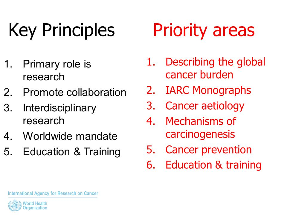 Key Principles Priority areas