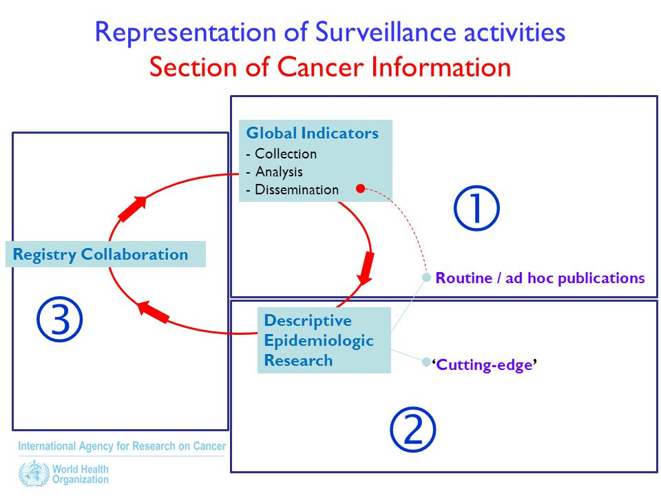 Representation of Surveillance activities Section of Cancer Information