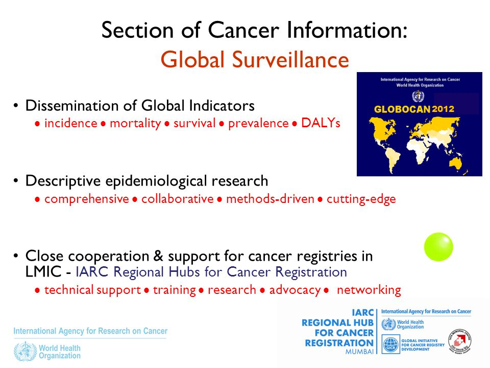 Section of Cancer Information: Global Surveillance