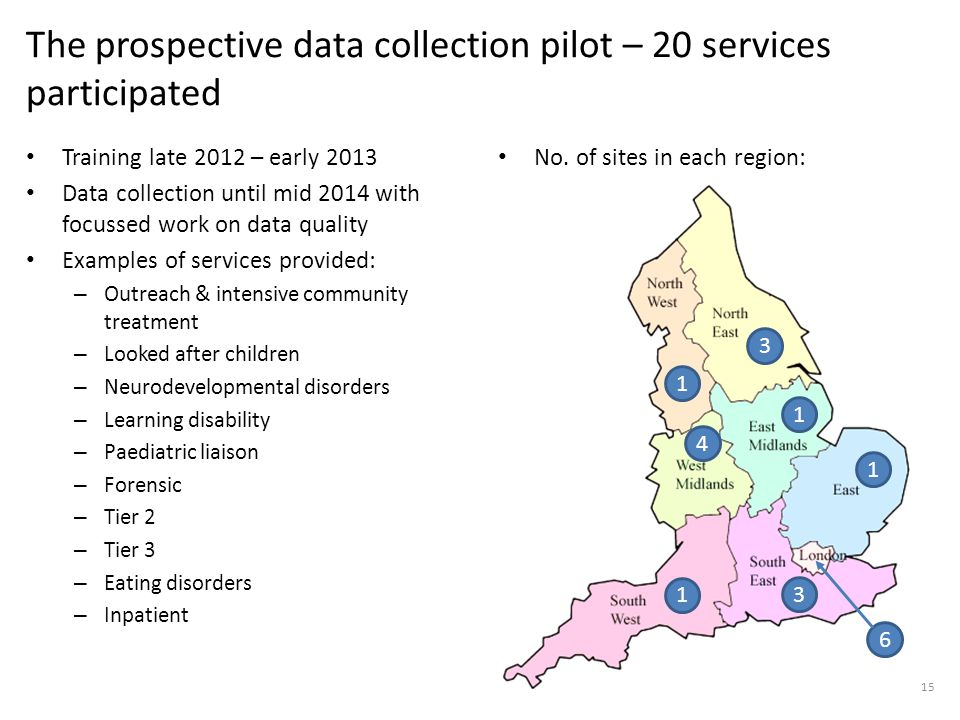 The prospective data collection pilot – 20 services participated