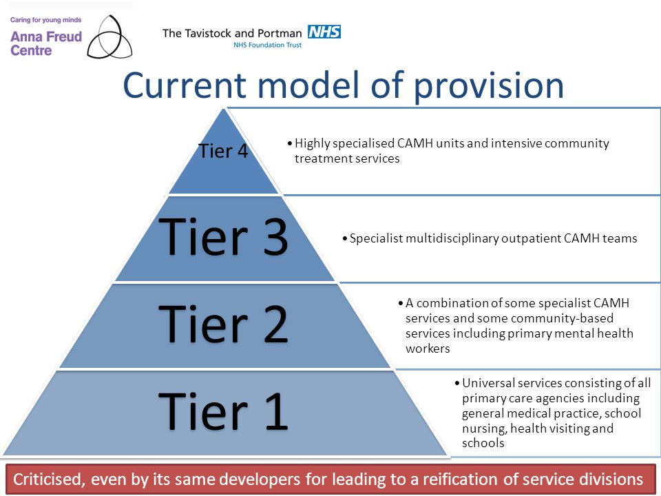 Current model of provision
