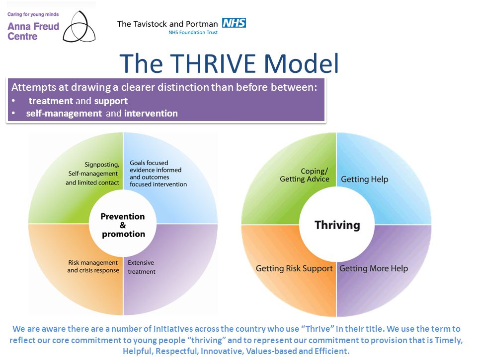The THRIVE Model Attempts at drawing a clearer distinction than before between: treatment and support.