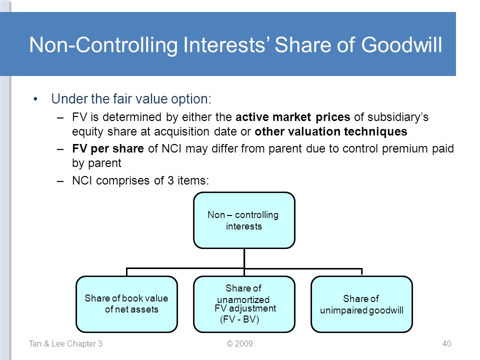 Non-Controlling Interests' Share of Goodwill