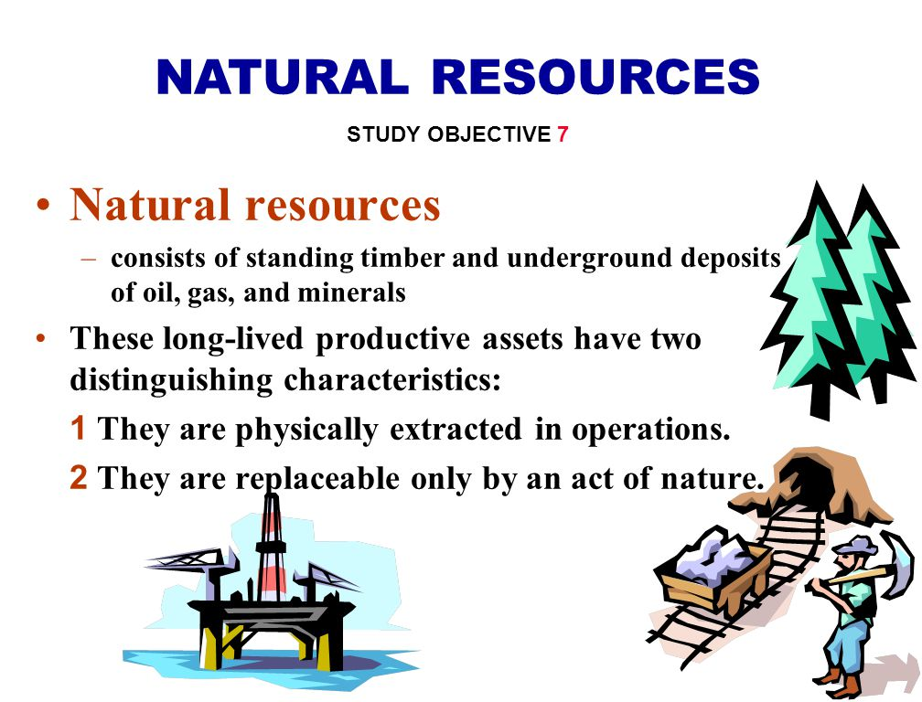 NATURAL RESOURCES Natural resources