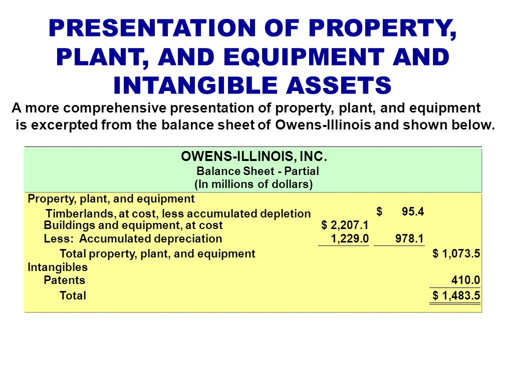 PRESENTATION OF PROPERTY, PLANT, AND EQUIPMENT AND INTANGIBLE ASSETS