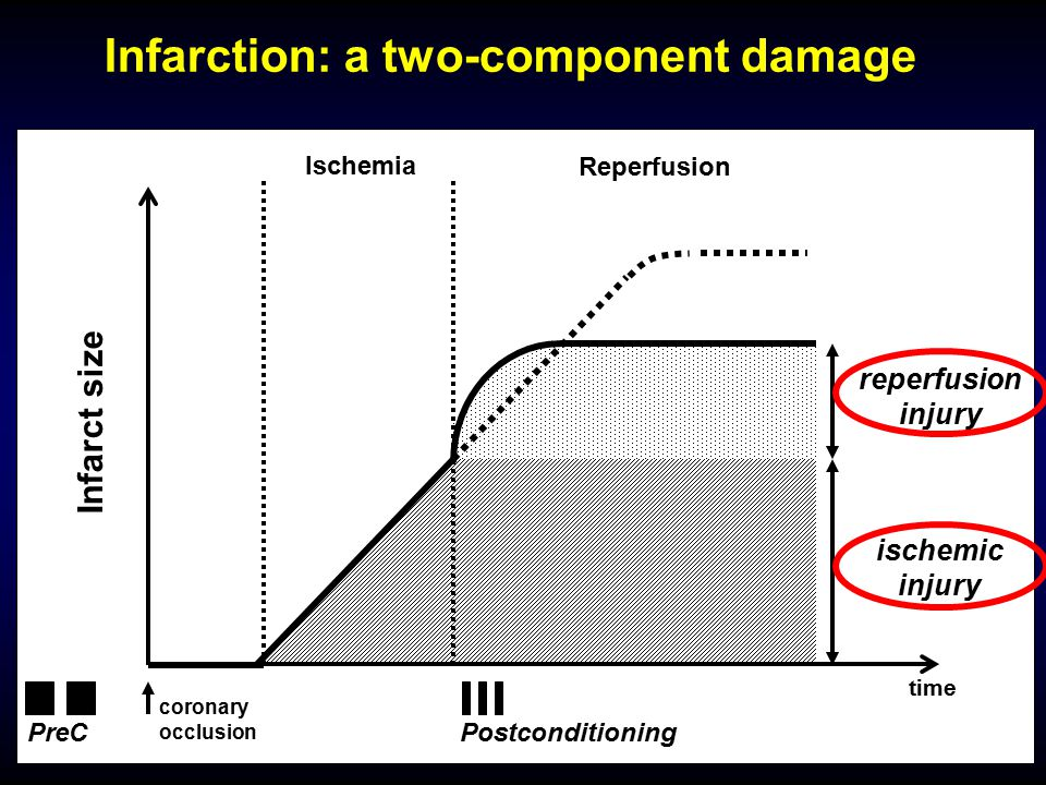 Infarction: a two-component damage