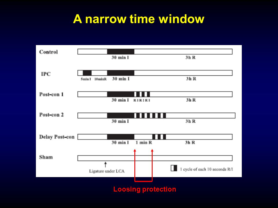 A narrow time window Loosing protection