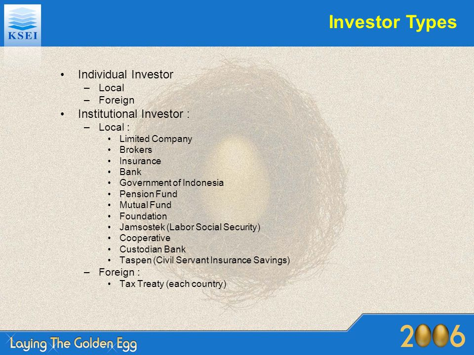 Investor Types Individual Investor Institutional Investor : Local