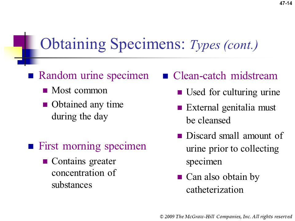 Obtaining Specimens: Types (cont.)