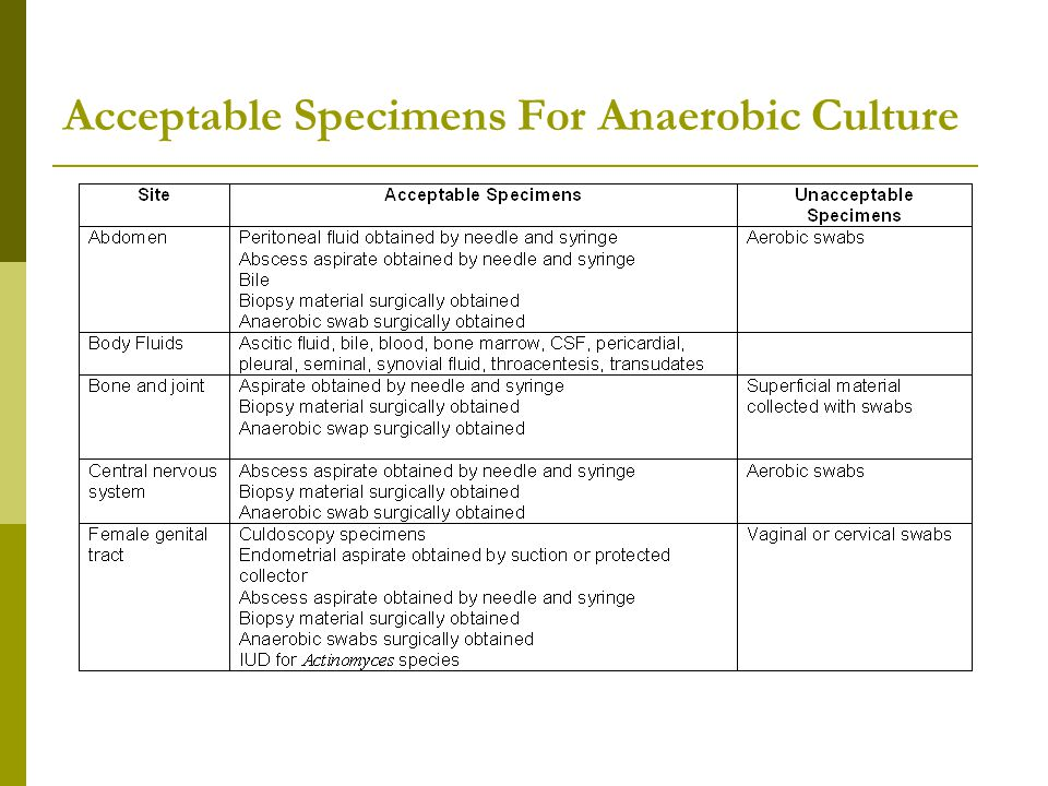 Acceptable Specimens For Anaerobic Culture