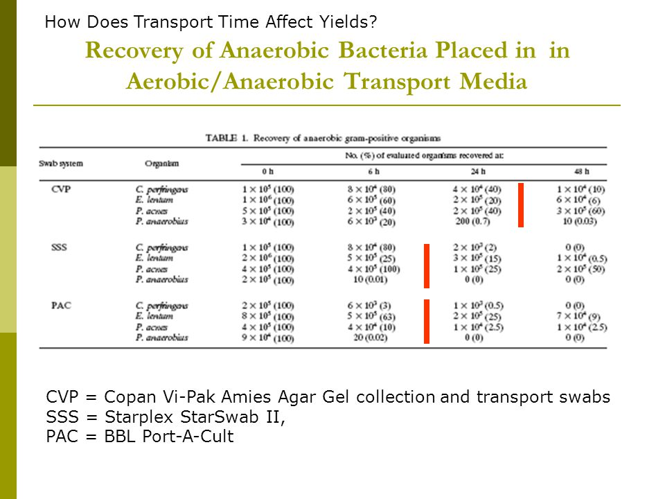 How Does Transport Time Affect Yields