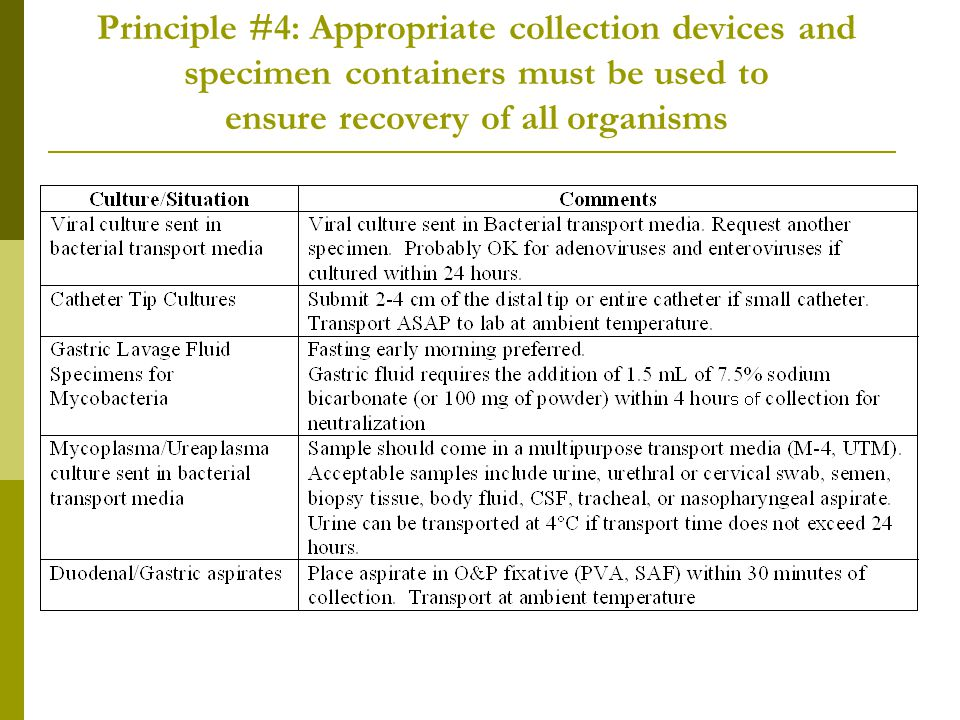 Principle #4: Appropriate collection devices and specimen containers must be used to ensure recovery of all organisms