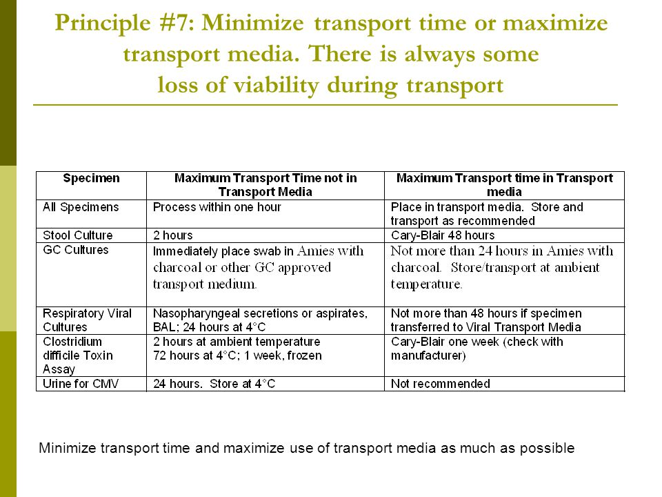 Principle #7: Minimize transport time or maximize transport media