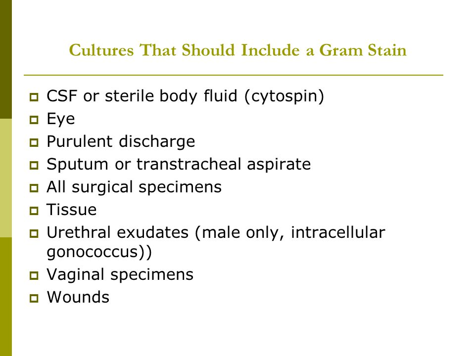 Cultures That Should Include a Gram Stain