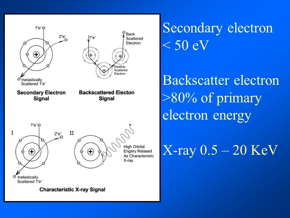 Secondary electron < 50 eV Backscatter electron >80% of primary electron energy X-ray 0.5 – 20 KeV