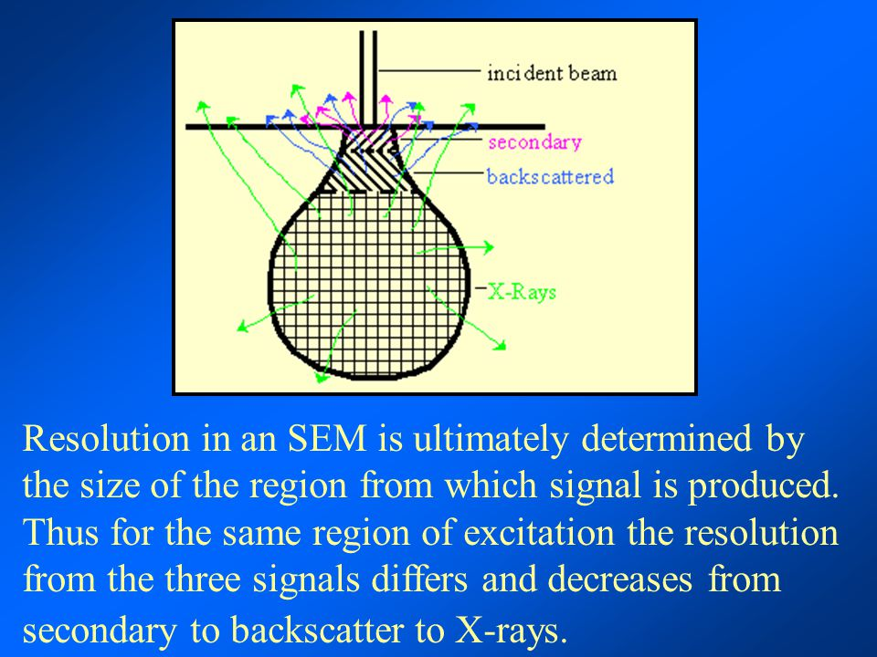 Resolution in an SEM is ultimately determined by the size of the region from which signal is produced.