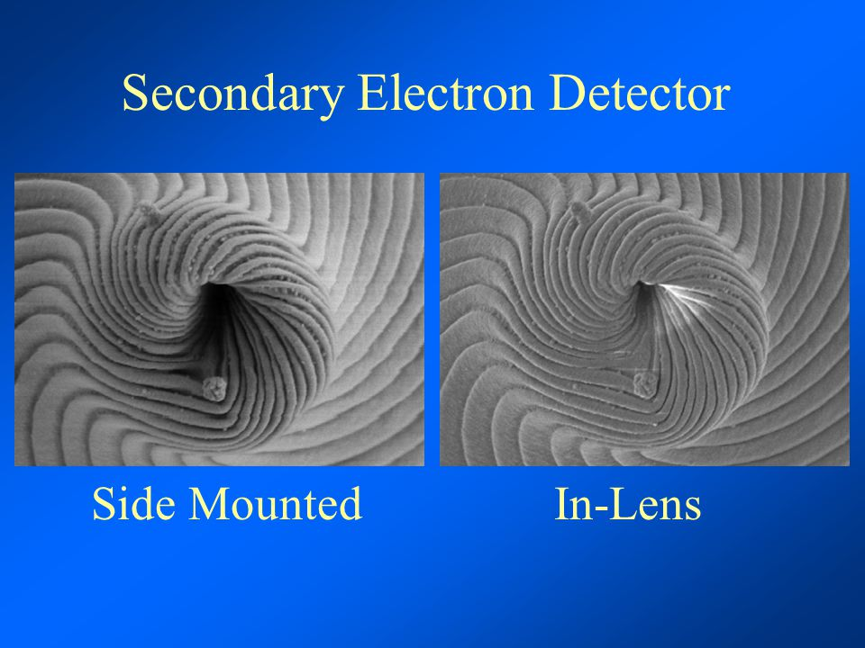 Secondary Electron Detector