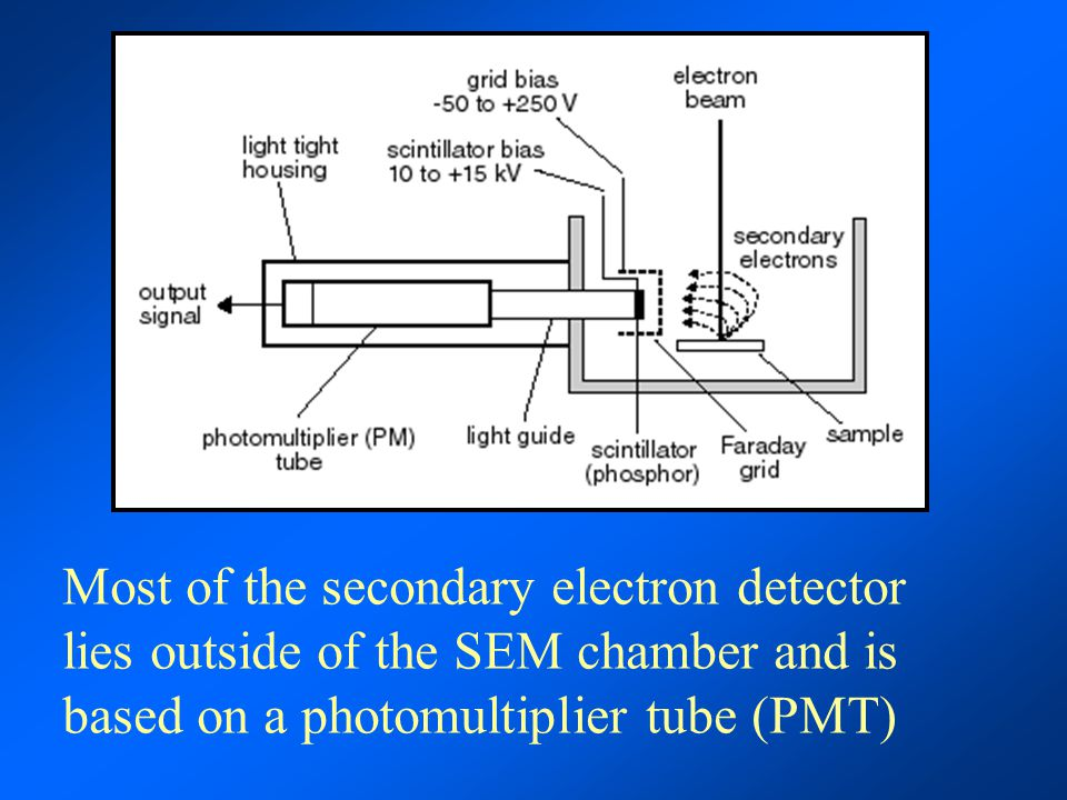 Most of the secondary electron detector lies outside of the SEM chamber and is based on a photomultiplier tube (PMT)