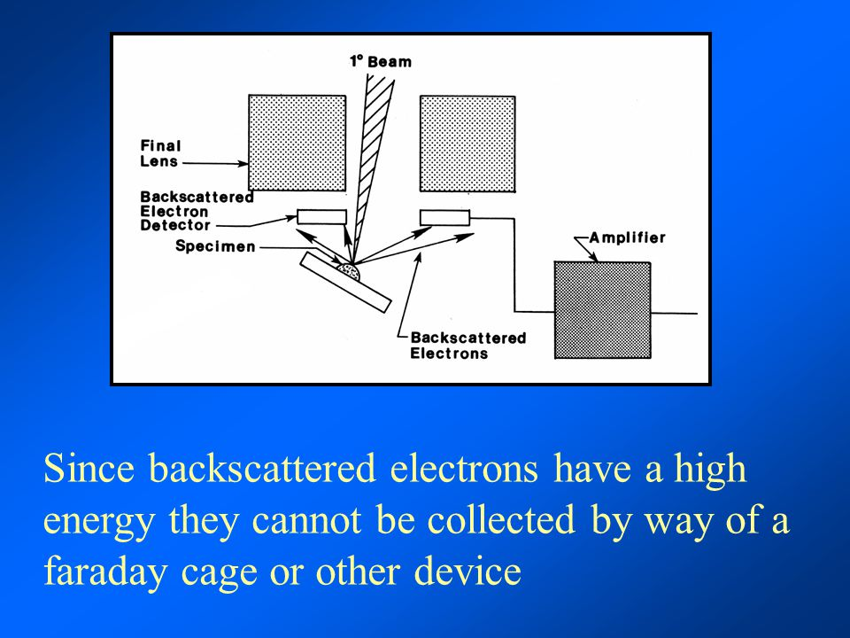 Since backscattered electrons have a high energy they cannot be collected by way of a faraday cage or other device