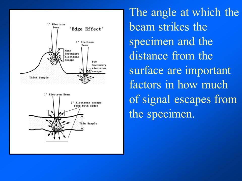 The angle at which the beam strikes the specimen and the distance from the surface are important factors in how much of signal escapes from the specimen.